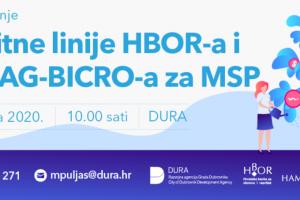 Kreditne linije HBOR-a i HAMAG-a