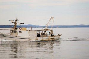 ribari – natječaji